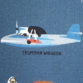 Vintageplanecloseup2bigcart
