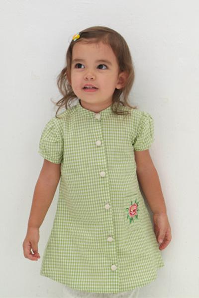 Gingham_shirt_dress